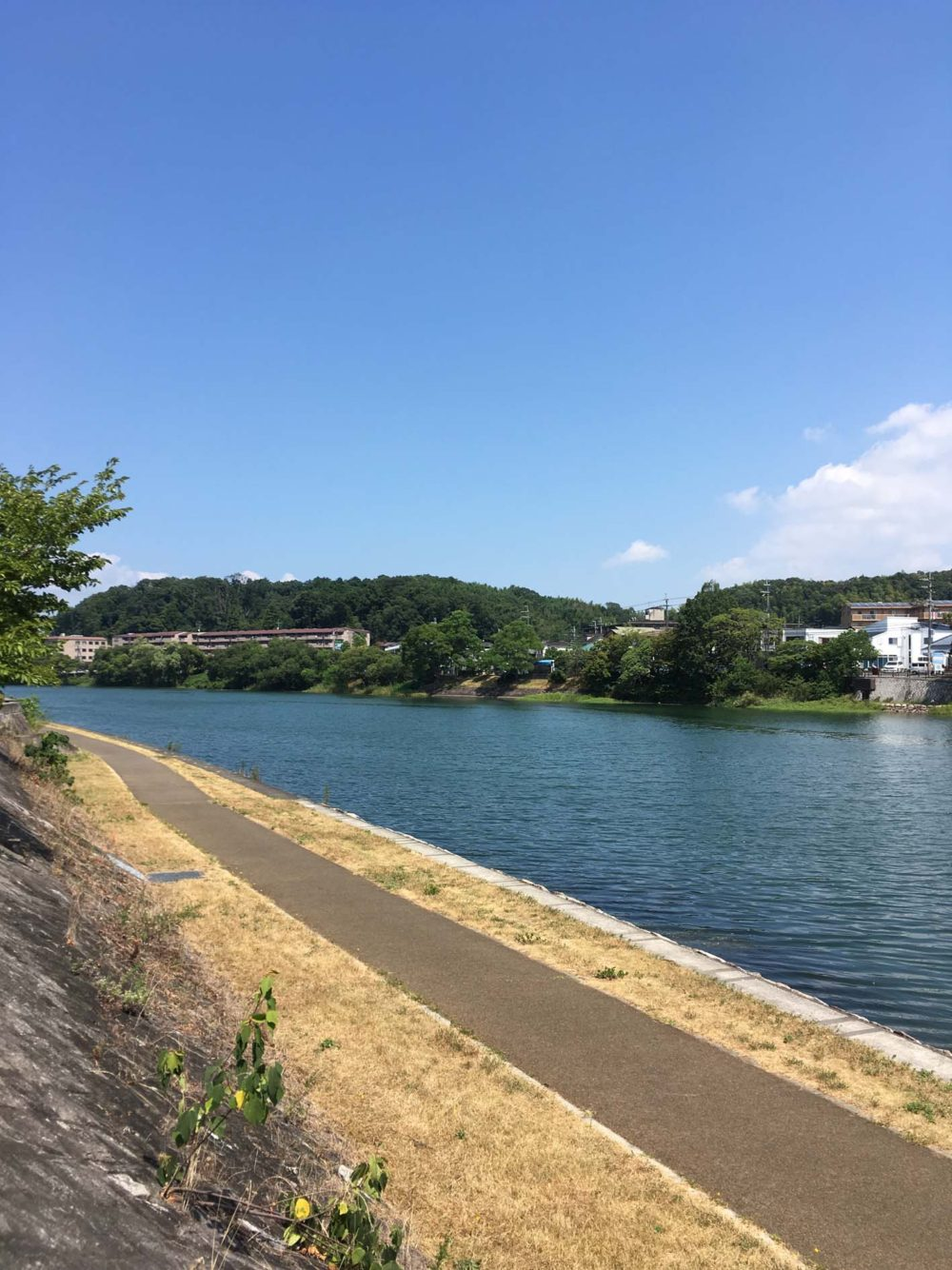 琵琶の水路