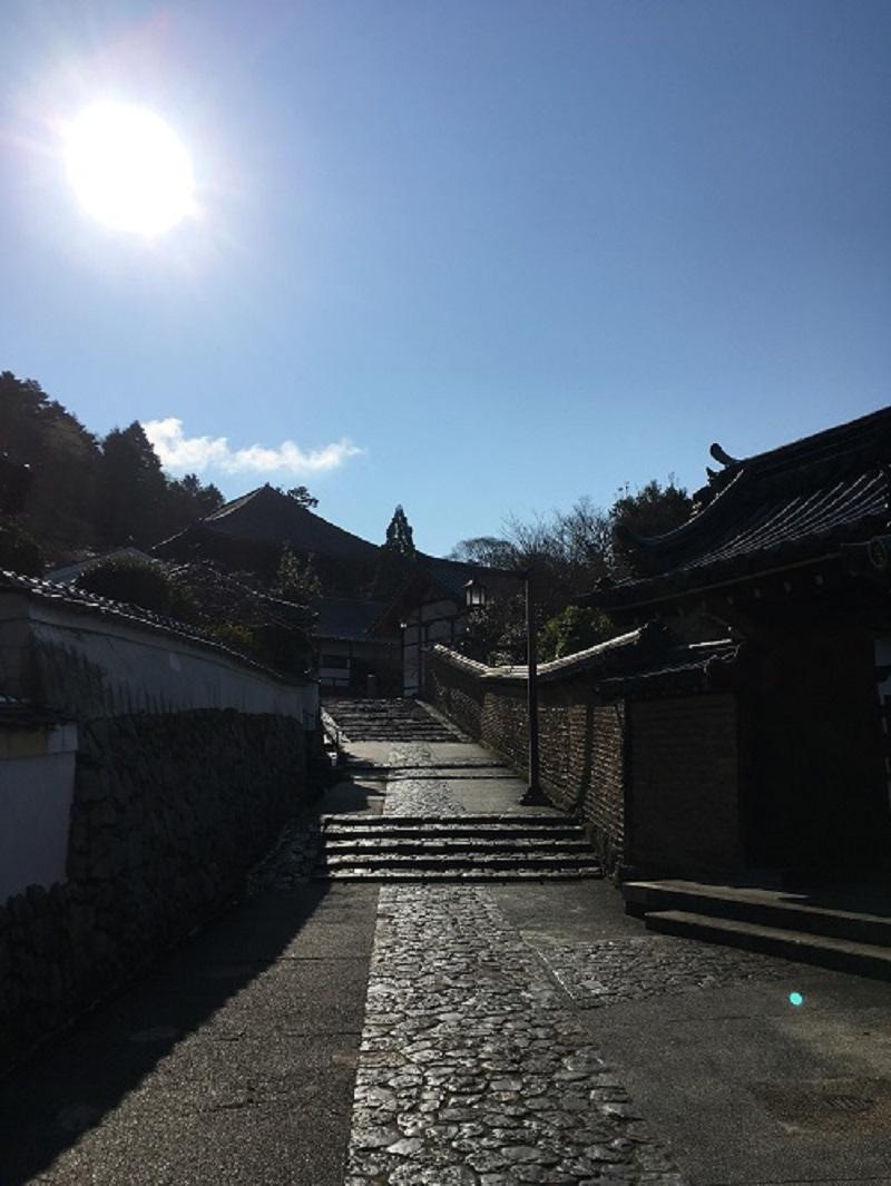 奈良で一番素敵な道