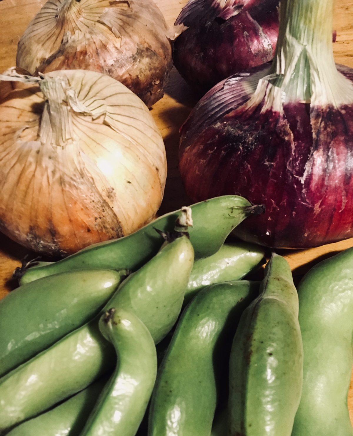初夏の野菜